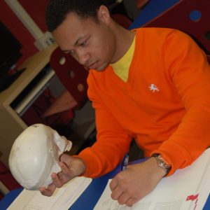 Young man studying human skull